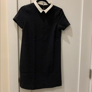 Zara little black dress with white collar